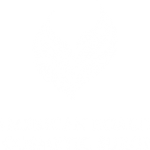 american board of cosmetic surgery